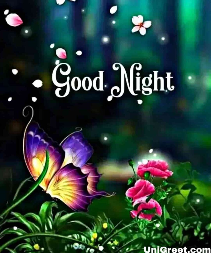 Good night beautiful picture for whatsapp dp