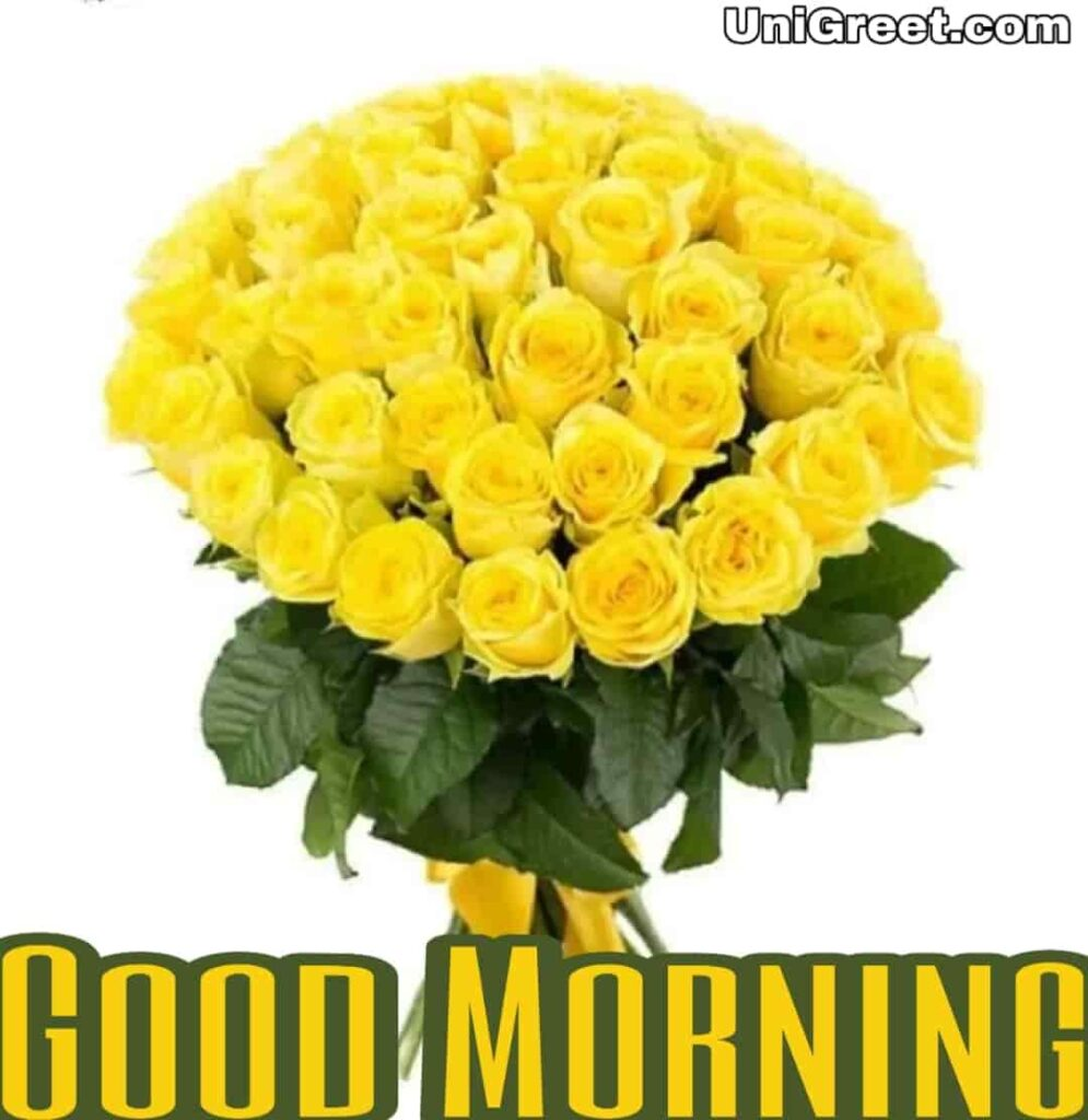 good morning beautiful yellow roses for WhatsApp dp