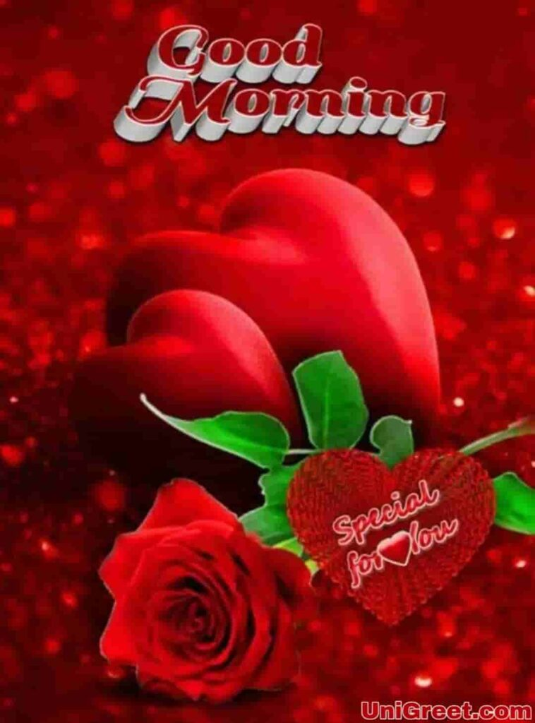 Good morning red rose for girlfriend boyfriend