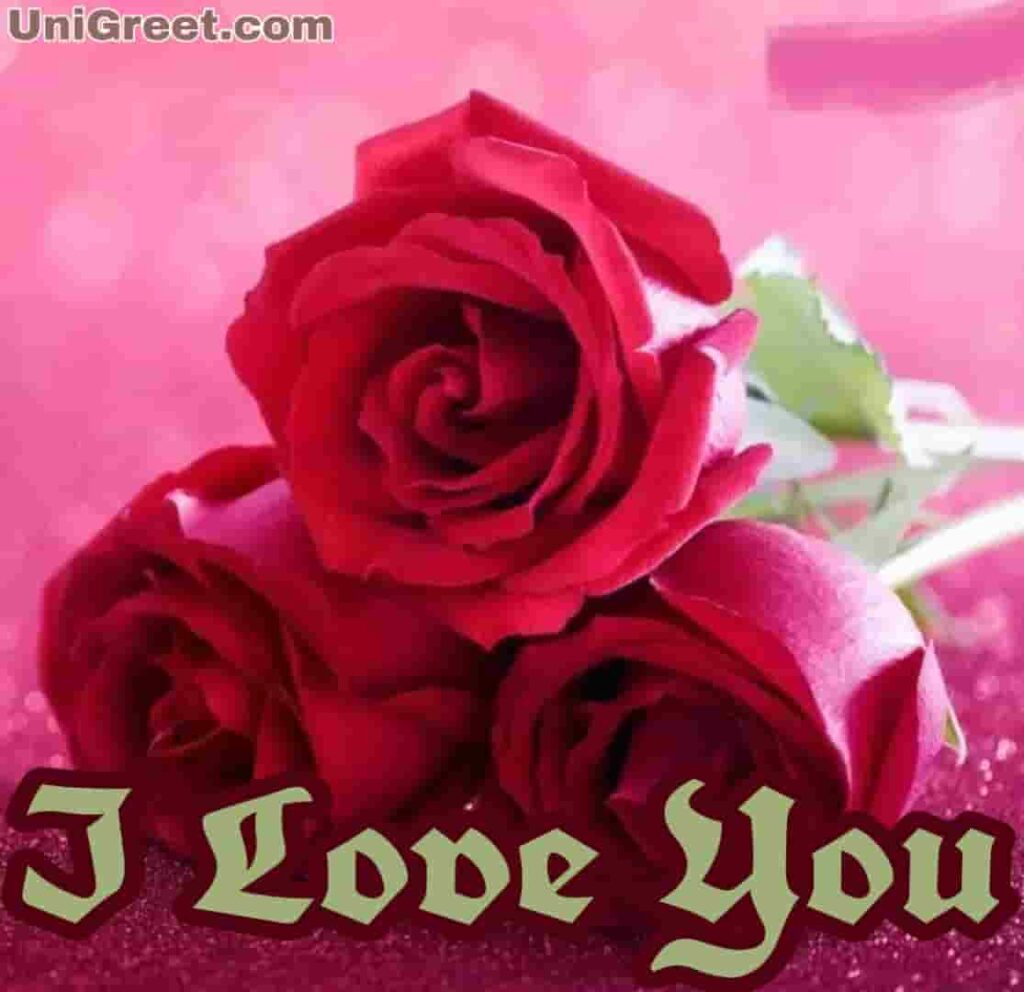 Latest rose images with I love you for rose, day dp