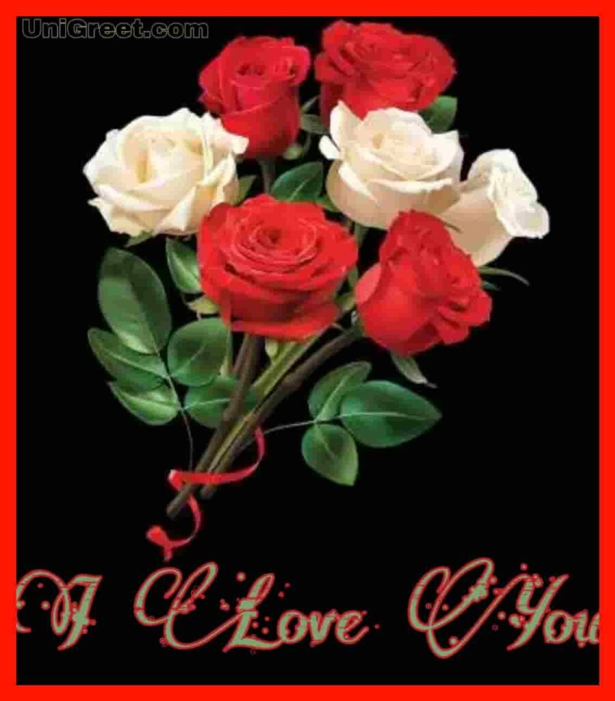 Beautiful roses with I love you