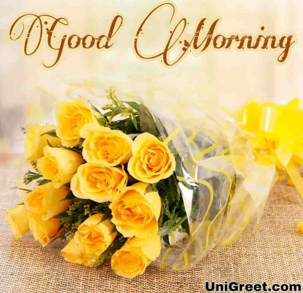 Good morning yellow rose WhatsApp status