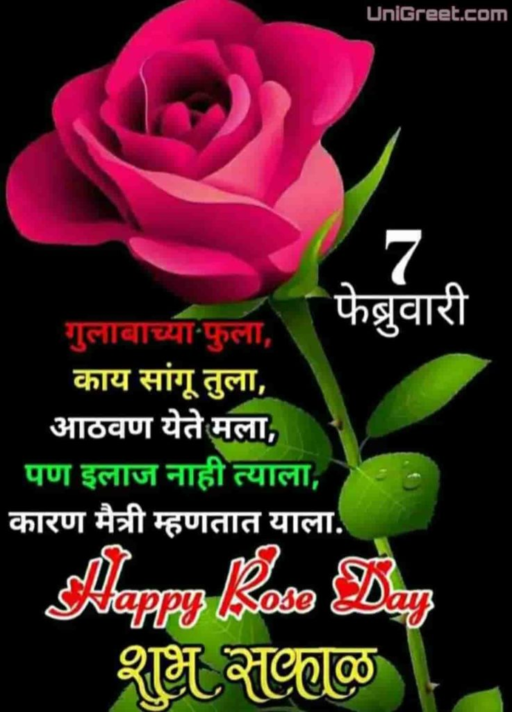 rose day images for friends in marathi