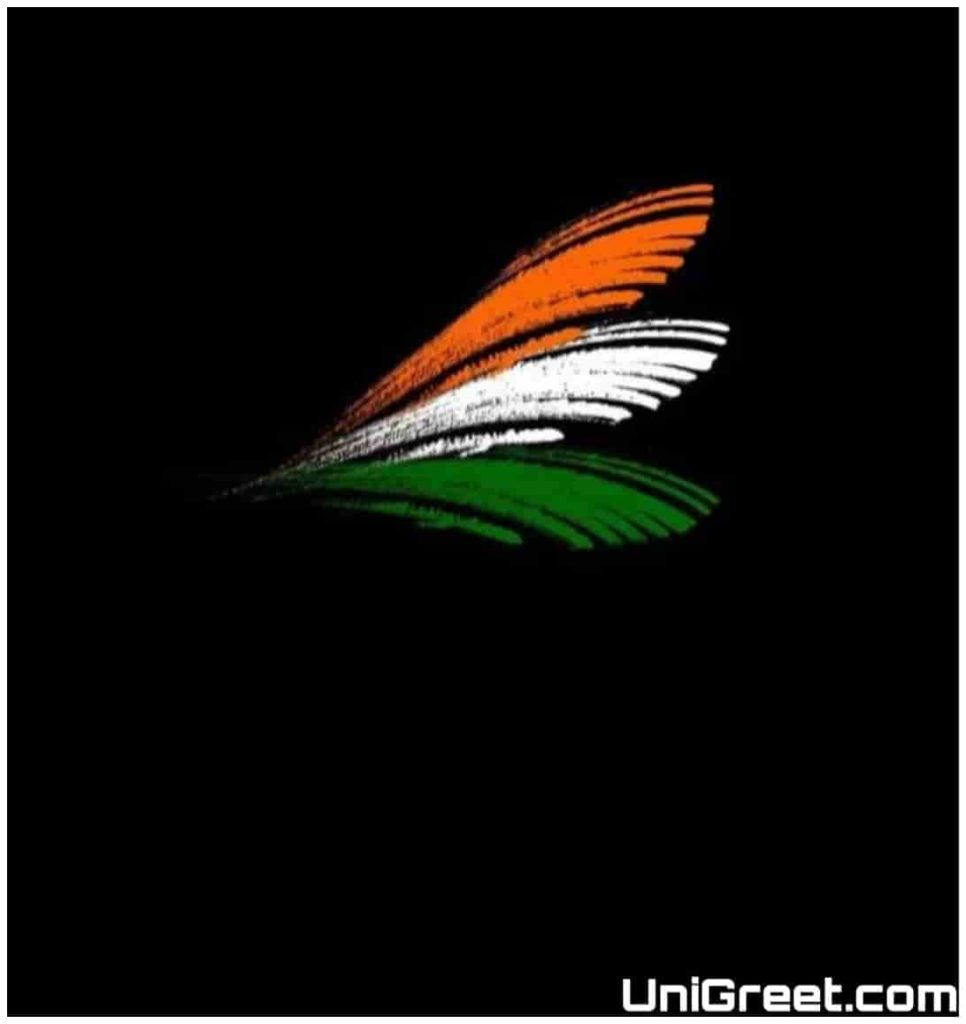 Indian flag colour dp
