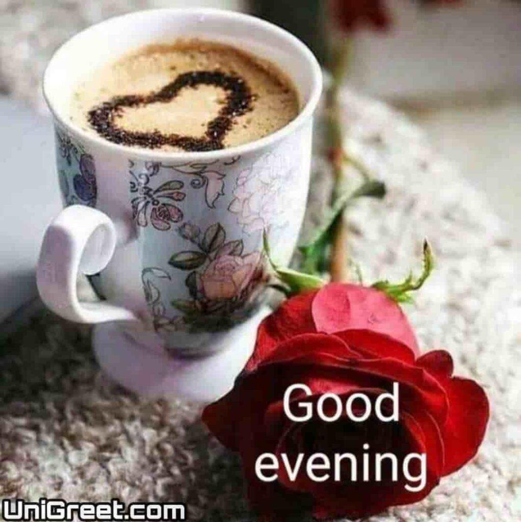Good Evening tea love rose