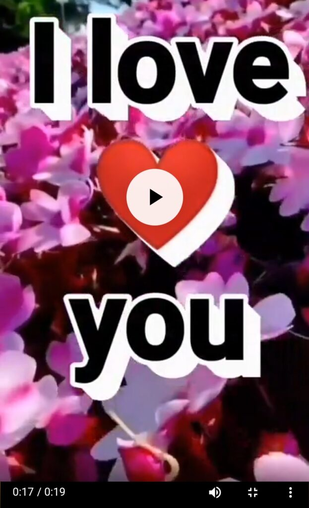 Good Morning Love Status Video Download For WhatsApp