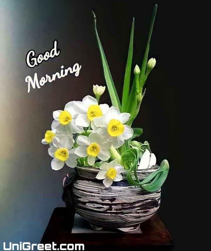 good morning photos for whatsapp status