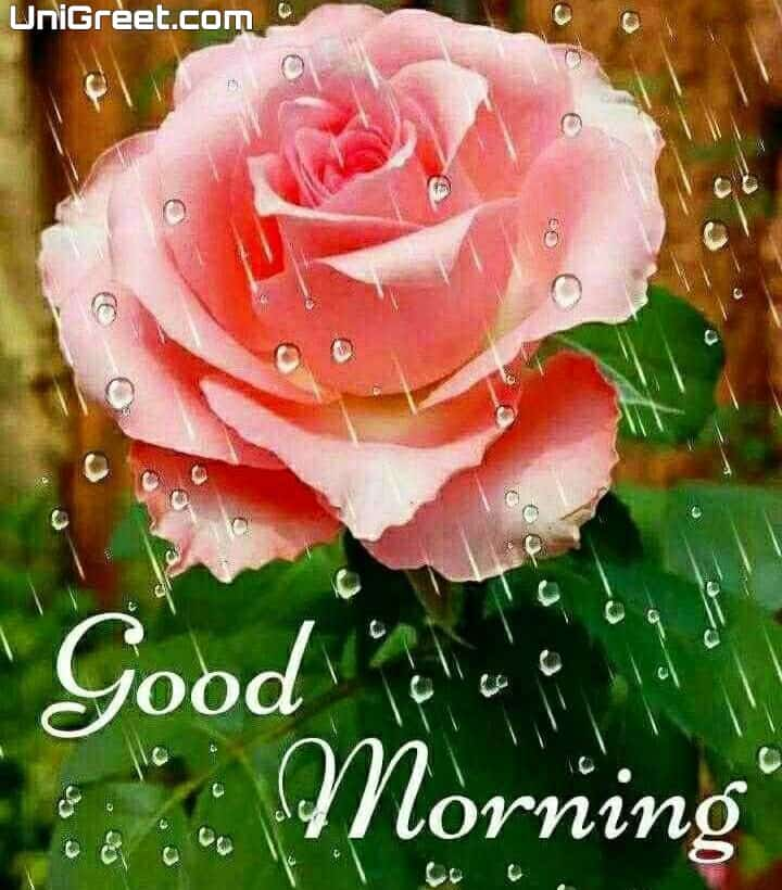 Amazing good morning images download